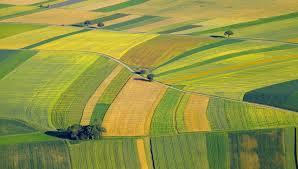 Lauksaimniecības sarunās baltiešiem līdzīgas nostādnes